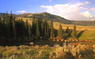 Lamar River Valley wallpapers and stock photos