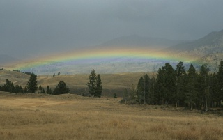 Lamar Valley wallpapers and stock photos