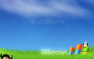 Windows Invasion wallpapers and stock photos