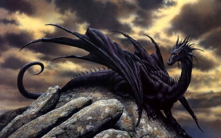Black Dragon wallpapers and stock photos