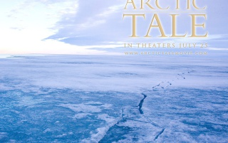 Arctic Tale wallpapers and stock photos