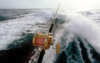 Sportfishing Boat wallpapers and stock photos