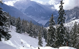 Skiing, Swiss Alps wallpapers and stock photos