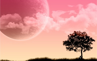 Pink Dream wallpapers and stock photos