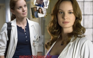Dr. Sara Tancredi wallpapers and stock photos