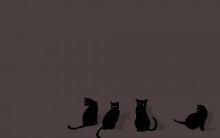 Four Black Cats wallpapers and stock photos