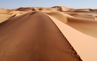 Sea of Sand wallpapers and stock photos