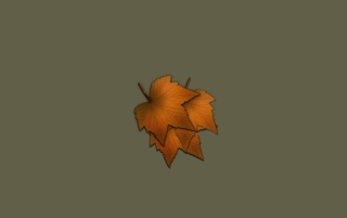 Otoño wallpapers and stock photos