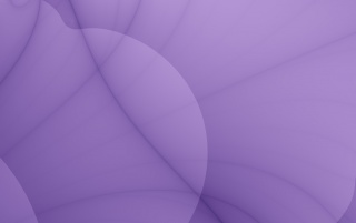 Details for the 'Violet Petal' stock photo, free image
