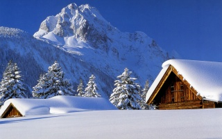 Next: Winter Cabin