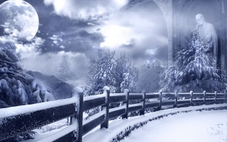 Mists of Winter wallpapers and stock photos