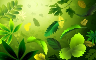 Green Leafs wallpapers and stock photos