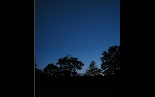 Moon sky and trees wallpapers and stock photos