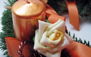 Previous: Candle Rose
