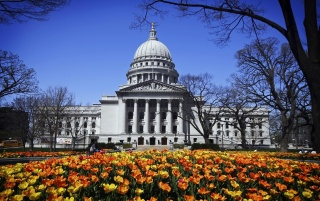 A Madison Spring Day wallpapers and stock photos