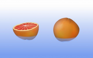 Two Grapefruits wallpapers and stock photos