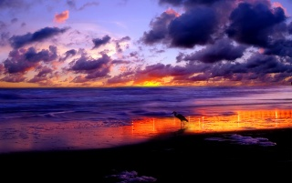 Beach sunset wallpapers and stock photos