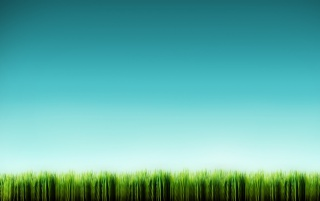 Grass line wallpapers and stock photos