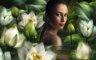 Woman and lillies wallpapers and stock photos