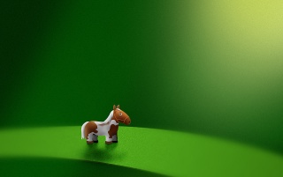 Micro horse wallpapers and stock photos