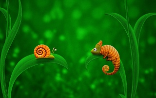 Snail and chameleon wallpapers and stock photos