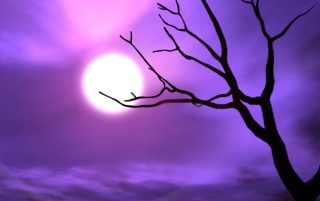 Purple sky wallpapers and stock photos