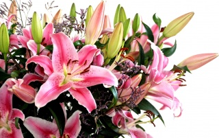 Nice flower bouquet wallpapers and stock photos