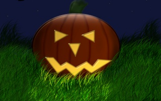 Pumpkin in grass wallpapers and stock photos