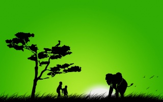 Elephant silhouette wallpapers and stock photos