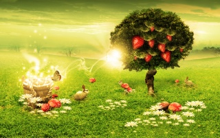 Strawberry tree wallpapers and stock photos