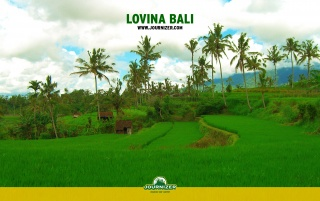 Lovina Bali wallpapers and stock photos