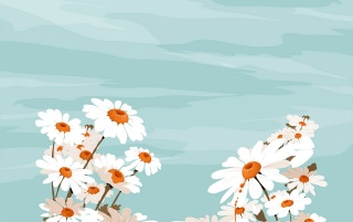 White flowers and sky wallpapers and stock photos