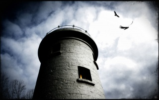 Tower and crows wallpapers and stock photos