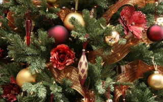 Nice Christmas tree wallpapers and stock photos
