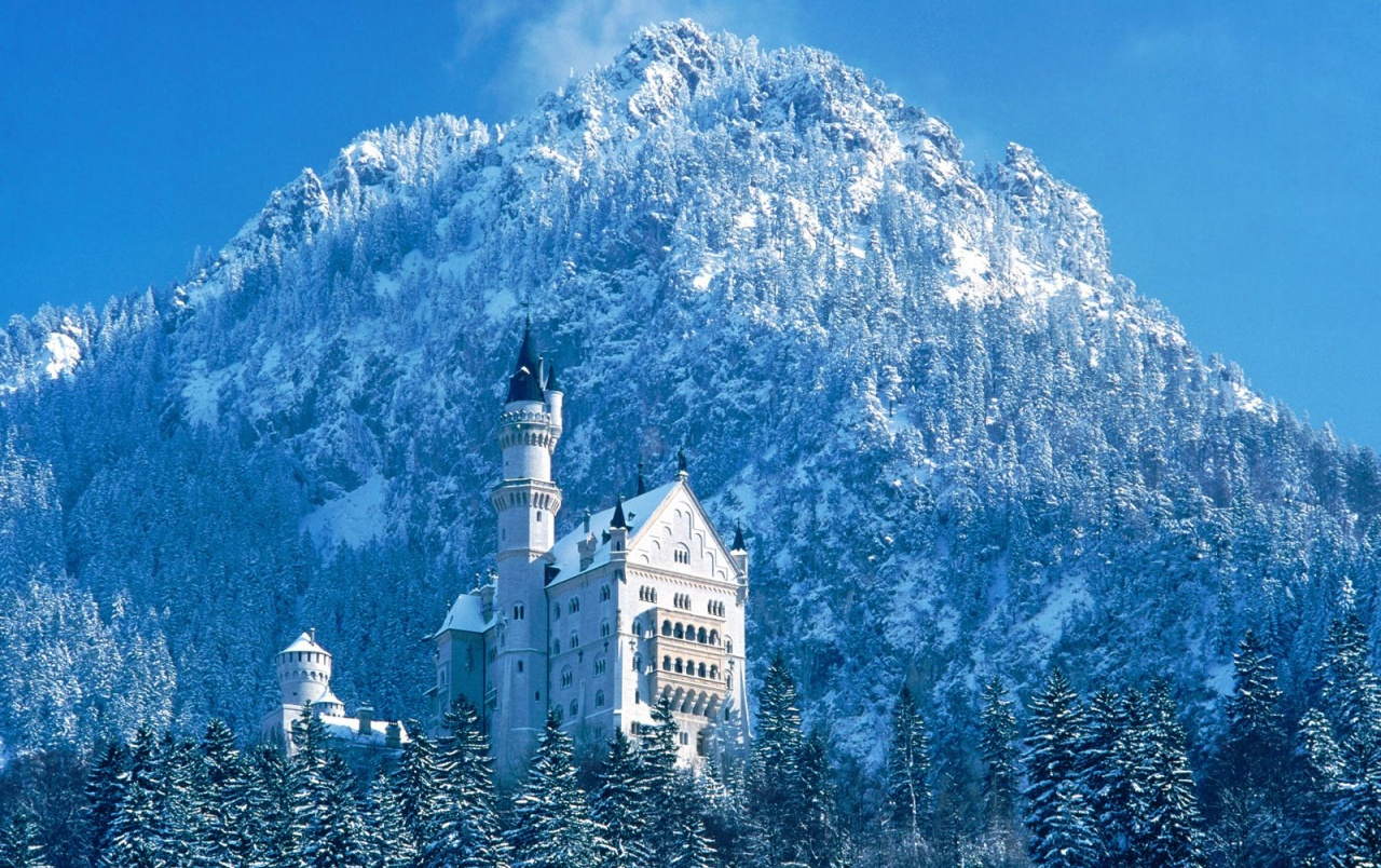 Tall winter castle wallpapers
