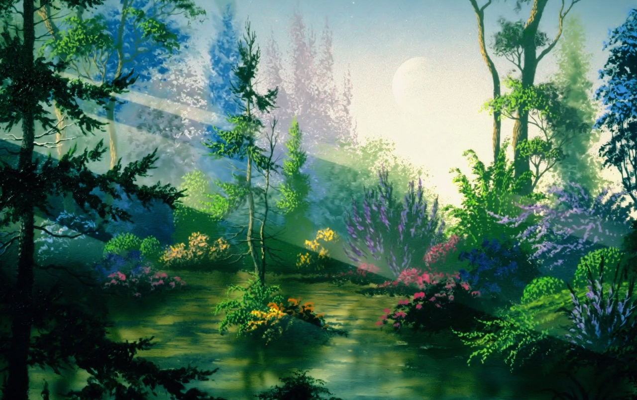 Fantasy Forest Wallpapers Fantasy Forest Stock Photos