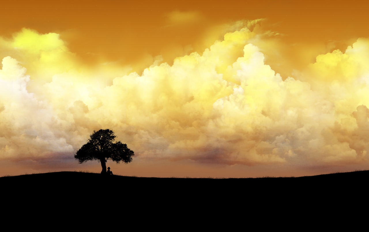 Wide Alone Tree Left Wallpapers