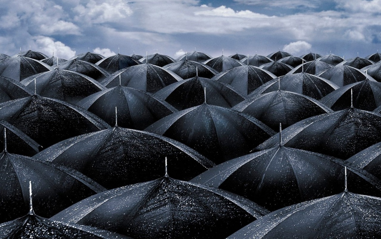 Black umbrellas wallpapers