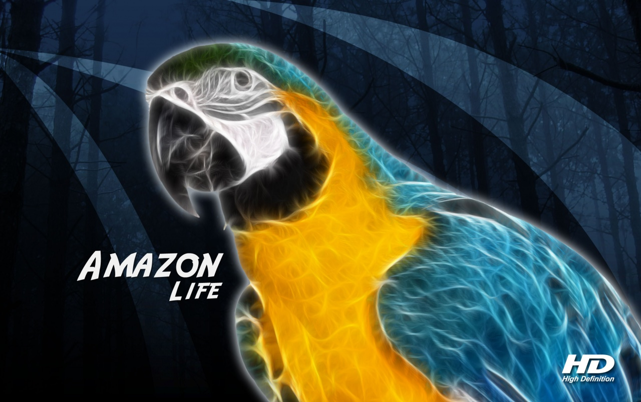 Arara - Amazon Alife wallpapers
