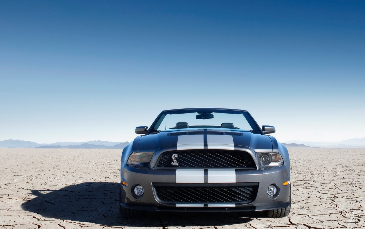 Ford Shelby GT500 Front wallpapers