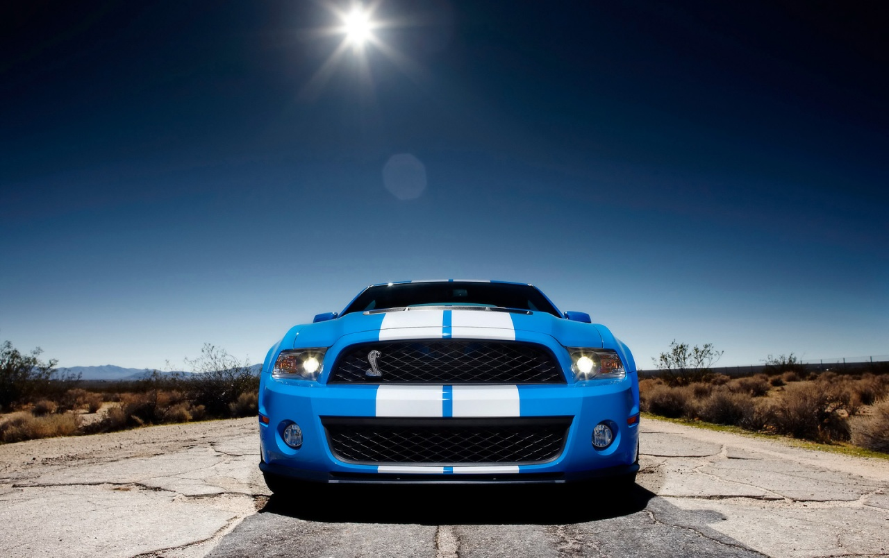 Ford Shelby GT500 Front 2 wallpapers