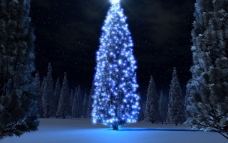 Christmas blue tree wallpapers