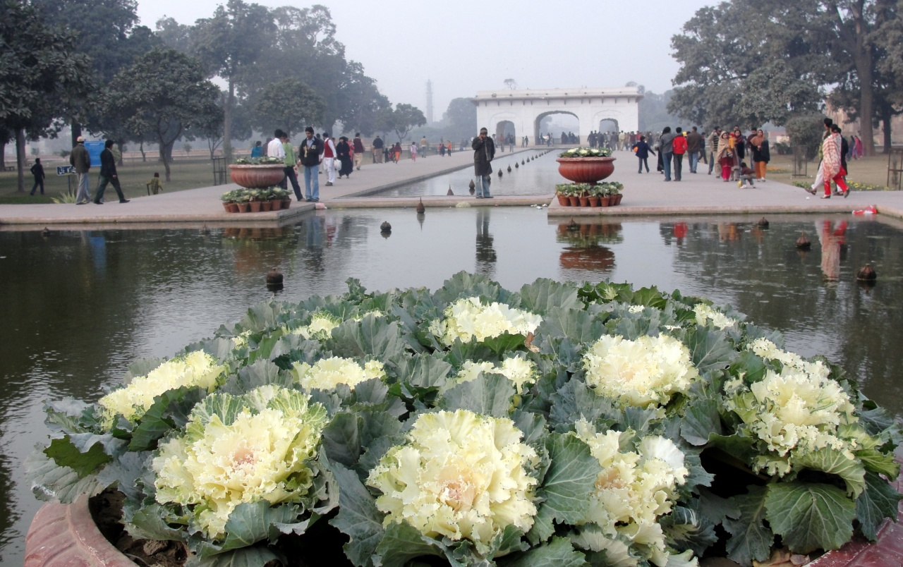 Shalimar Gardens wallpapers