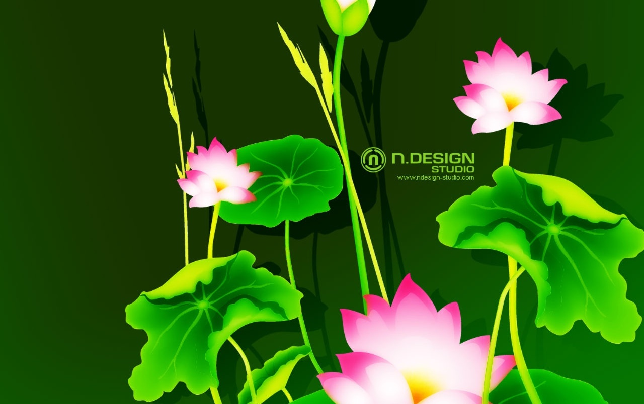 Lily flowers wallpapers lily flowers stock photos original lily flowers wallpapers izmirmasajfo