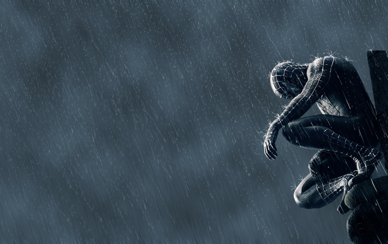 spiderman wallpapers | spiderman stock photos