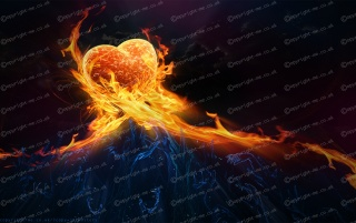 Love on fire wallpapers