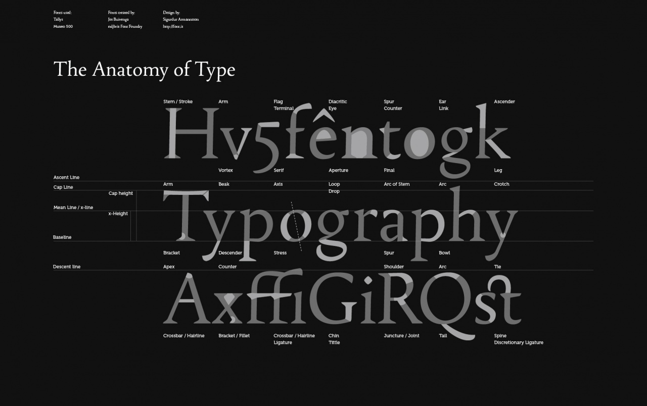 Font Anatomy wallpapers