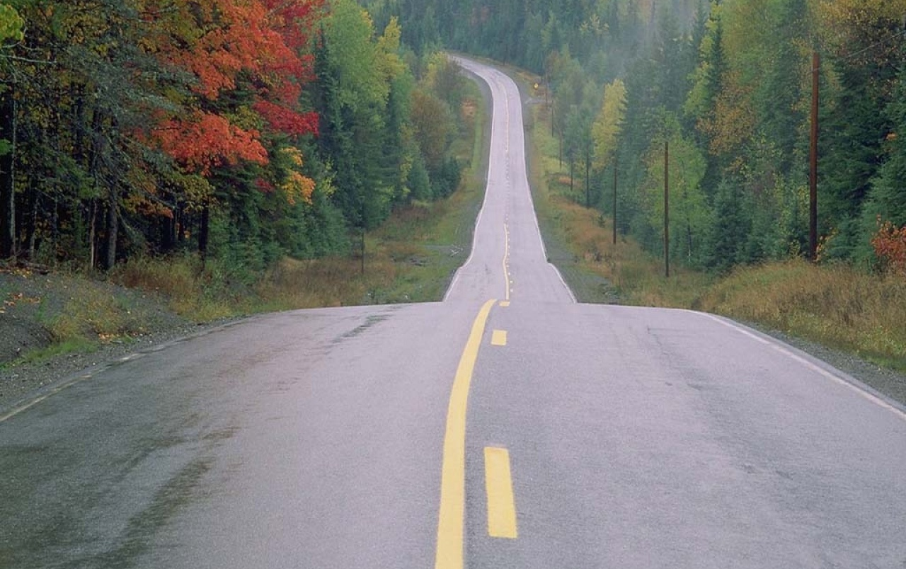 Forest road wallpapers | Forest road stock photos