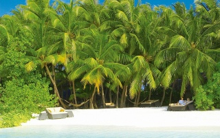 Amazing Male Atoll wallpapers