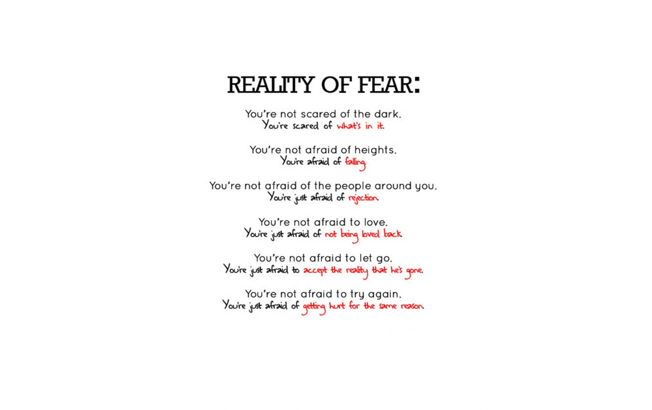 Reality of fear wallpapers